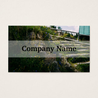 Alpine Wild Flowers On A Hiking Road Business Card