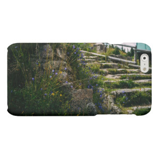 Alpine Wild Flowers On A Hiking Road Matte iPhone 6 Case