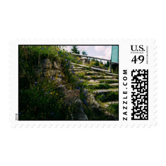 Alpine Wild Flowers On A Hiking Road Stamp