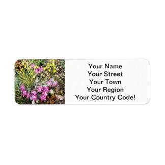 Alpine Wildflowers Flora Label