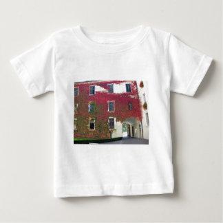 alps in autumn baby T-Shirt