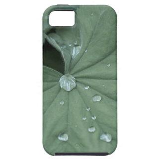 alquimila iPhone 5 Case-Mate cárcasas