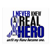 ALS Never Knew A Hero 2 Nana Postcard