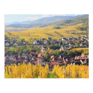 Alsace, France 6 Postcard