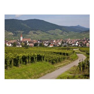 Alsace, France Postcard