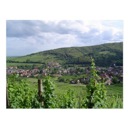 Alsace vineyards post cards