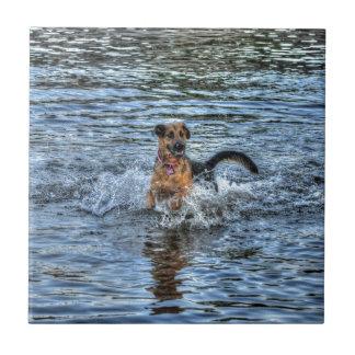 Alsatian German Shepherd Dog-lover Gift Small Square Tile