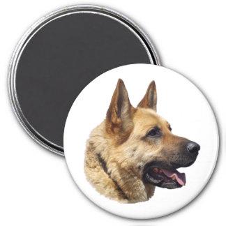 Alsatian German shepherd portrait Magnet