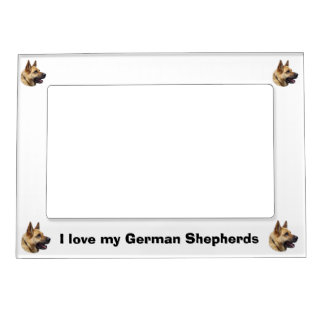 Alsatian German shepherd portrait Magnetic Frame