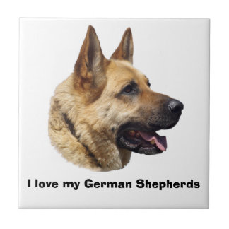 Alsatian German shepherd portrait Tile