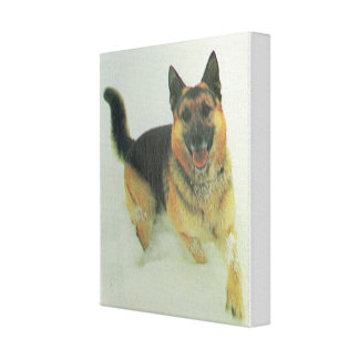 Alsatian rescue dog canvas print