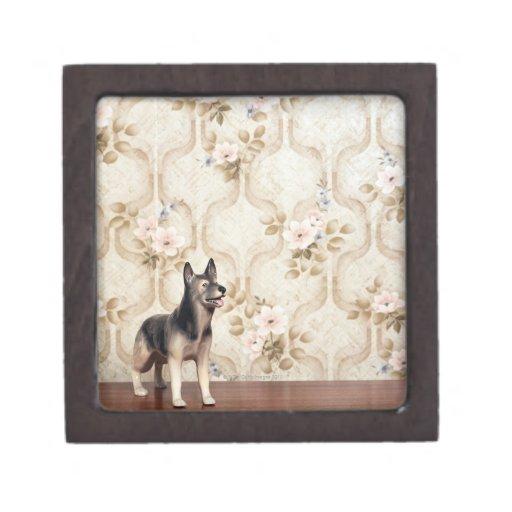 Alsation dog gift box