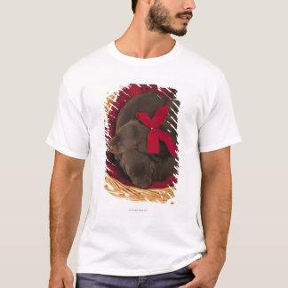 Also Doberman Pincher. Medium-sized domestic dog T-Shirt