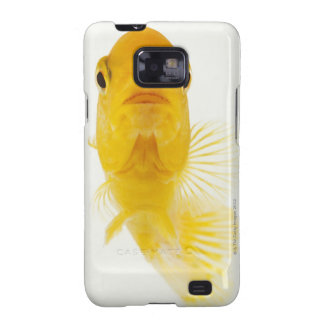 Also known as Comet-tailed goldfish. Hardy Samsung Galaxy S Cover