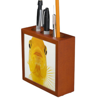 Also known as Comet-tailed goldfish. Hardy Pencil/Pen Holder
