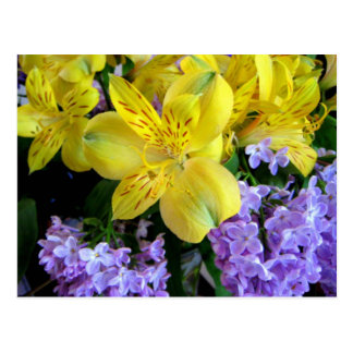 Alstroemeria and  Lilacs Flowers Postcard