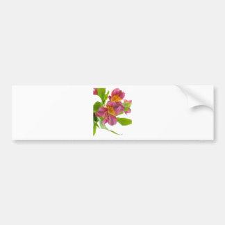 alstroemeria flowers bumper sticker