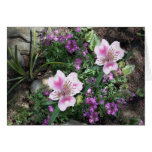 Alstroemeria Flowers Greeting Card