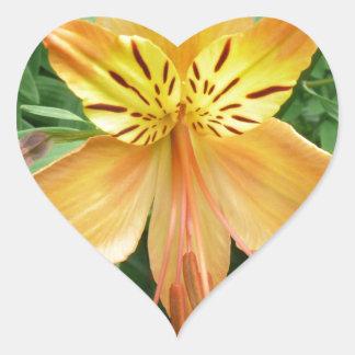 Alstroemeria Heart Sticker