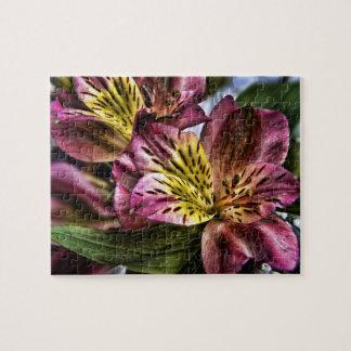 Alstroemeria Peruvian Lily flower jigsaw puzzle