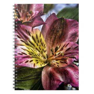 Alstroemeria Peruvian Lily flower spiral notebook