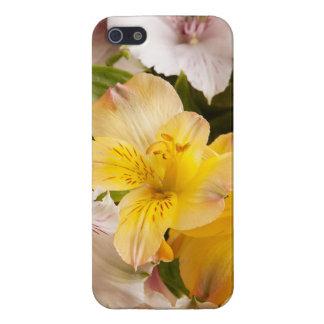 Alstroemeria (Peruvian Lily) iPhone Case