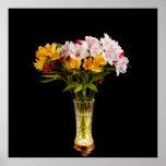 Alstroemeria (Peruvian Lily) Posters