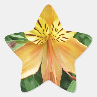 Alstroemeria Star Sticker