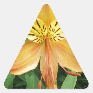 Alstroemeria Triangle Sticker