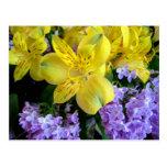 Alstroemeria y postal de las flores de las lilas