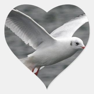 alta gaviota hermosa del vuelo sobre el océano pegatina en forma de corazón
