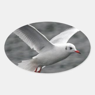 alta gaviota hermosa del vuelo sobre el océano pegatina ovalada