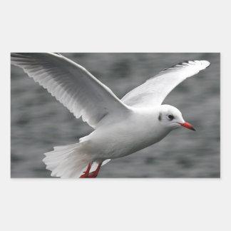 alta gaviota hermosa del vuelo sobre el océano pegatina rectangular