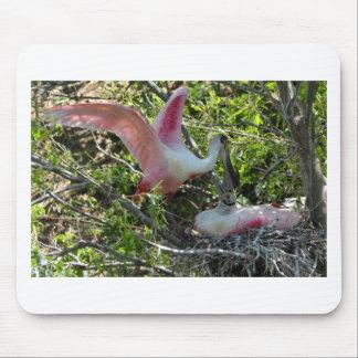 Alta isla Tejas del Spoonbill rosado Alfombrillas De Ratones