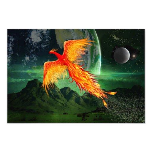 Alta Phoenix que vuela Impresiones Fotográficas