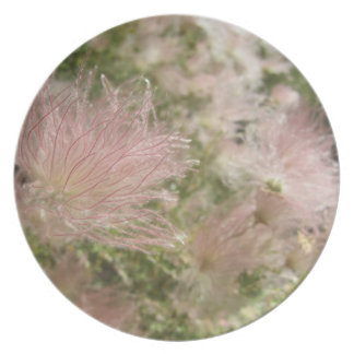 Alta placa de los Wildflowers del desierto Platos