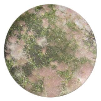 Alta placa del Wildflower del desierto Plato De Cena