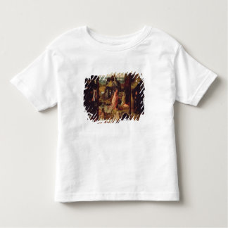 Altarpiece of the Hermits (oil on panel) Shirt