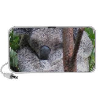 Altavoces de la abrazo de la koala