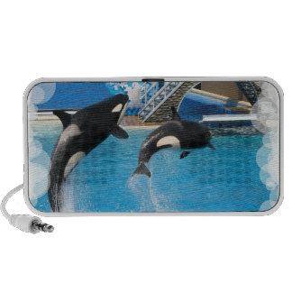 Altavoces de las ballenas de la orca