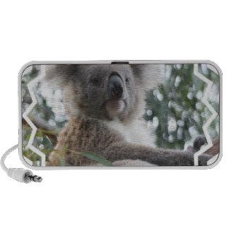 Altavoces de los hechos del oso de koala