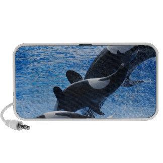 Altavoces del trío de la orca