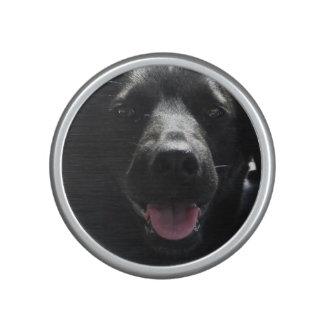 Altavoces lindos de Bumpster de la cara del perro Altavoz Bluetooth