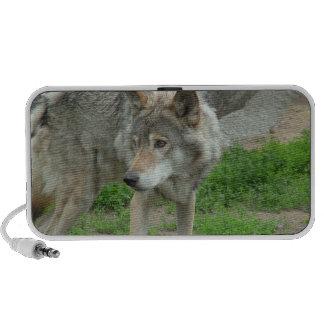 Altavoces portátiles cuidadosos del lobo