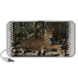 Altavoces portátiles de Jaguar del Panthera