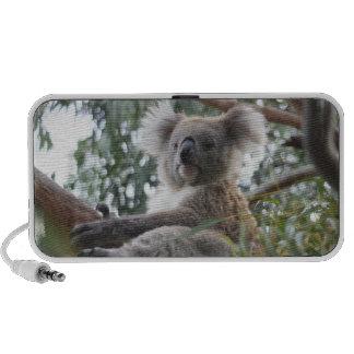 Altavoces portátiles de la koala