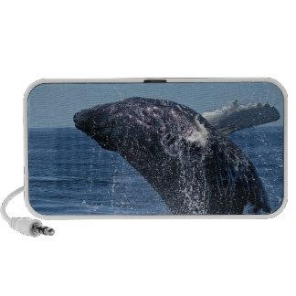 Altavoces portátiles de salto de la ballena joroba