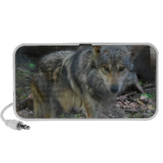 Altavoces portátiles de vagabundeo del lobo