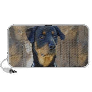 Altavoces portátiles del perro de Rottweiler