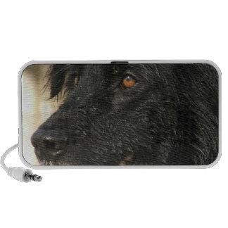 Altavoces portátiles del perro de Terranova